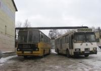 Ikarus-260 №326-81 ЕВ, ЛАЗ-5252 №101-86 ЕВ. Маріуполь, АТЦ ММК ім. Ілліча