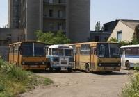 Ikarus-260 #АВ 5285 АС, Ikarus-260 #АВ 5264 АС, ПАЗ-672М №101-79 ВЫ. Вінниця, автобусний парк