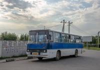Ikarus-260 №АЕ 7523 АА. Дніпропетровська область, Вільногірськ
