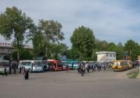Службові автобуси Таджицького алюмінієвого комбінату. Таджикістан, Турсунзаде