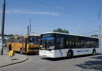 ЛАЗ A183 №АВ 4792 АХ, Ikarus-260 №АВ 5295 АС. Вінниця